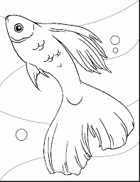 astounding cute fish coloring pages with coloring pages fish