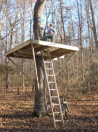 building your own tree house how to build a house how to build a treehouse around single tree round designs