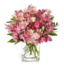 fds flowers ftd pink persuasion flowers bouquet at 1 800florals ftd florist