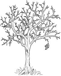 line art trees free download clip art free clip art on