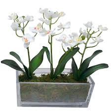 artificial orchids artificial orchids in glass pot threshold target