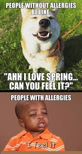and the allergy season is upon us y so serious