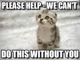 Can I Help You Meme - please help we can t sad cat meme on memegen
