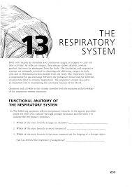respiratory system activities fosfe com