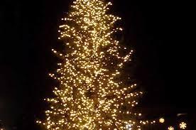 tree lightings for this weekend coloradoboulevard net