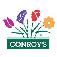 Flowers Irvine California - conroy u0027s flowers in irvine ca 3881 alton pkwy ste e irvine ca