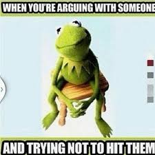 Funny Frog Meme - kermit the frog memes 18 funny pictures