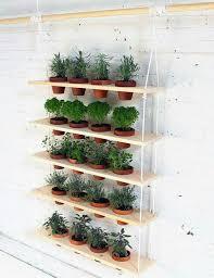 69 best indoor gardening images on pinterest indoor gardening