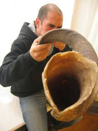 where to buy shofar how to a shofar huffpost