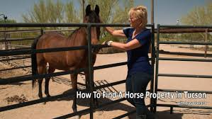 luxury homes in tucson az how to find a horse property for sale in tucson arizona buy and