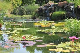 Botanical Gardens Dallas by Travelogue Dallas Tx Day 2 U2013 Life On Macro