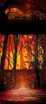 North Bay Mnr Fire by 113 Best Forest Fires Images On Pinterest Forests The Forest
