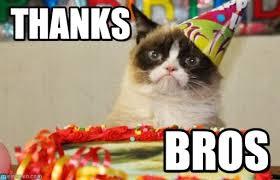 Grump Cat Meme Generator - thanks grumpy cat birthday meme on memegen