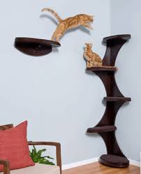 Modern Wooden Shelf Design by Modern Cat Furniture Design Ideas Wall Mounted And Heated Beds