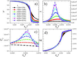 criticality of the phase transition on stage two in a lattice gas