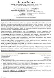 Veteran Resume Examples by Federal Resume Writing Service Resume Example