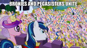 Bronies Meme - bronies and pegasisters unite meme by xxsolarmoonclipsexx on