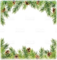 green christmas tree pine branches with pinecones like frame stock