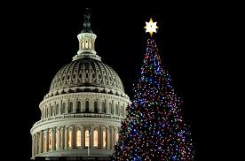 washington a capitol christmas holiday decorations the most