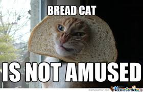 Cat In Bread Meme - bread cat is not amused by entermask meme center