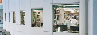 Home Design Courses Bc by Md Phd Program Md Undergrad Education Ubc Faculty Of Medicine