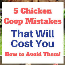 Keeping Free Range Chickens In Your Backyard Page 4 Of 58 Backyard Ideas 2018