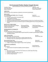 Resume Objective For Web Developer Globalisation Disadvantages Essay Custom Research Paper Editing