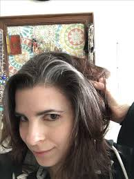 grey streaks in hair pictures pictures of gray streaked hair black hairstle picture