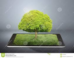 tablet computer and tree on it royalty free stock photo image