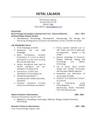 linkedin resume template 28 images pdf converter elite export