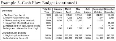 contoh format budget excel twelve steps to cash flow budgeting ag decision maker