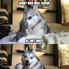 Dog Jokes Meme - pun dog jokes by george vega 566 meme center