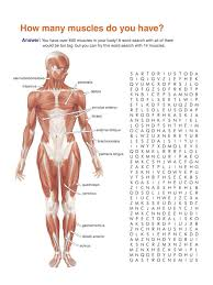 printables human anatomy worksheets eleaseit thousands of