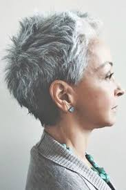funky hairstyle for silver hair 959 best kapsels hair images on pinterest hairstyles people