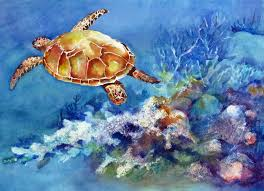 turtle glide phyllis vernon painting