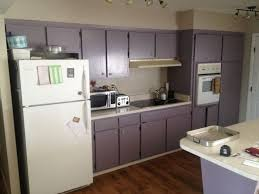 interior of kitchen cabinets best 25 purple kitchen cabinets ideas on purple