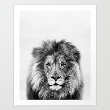 lion print lion art prints society6