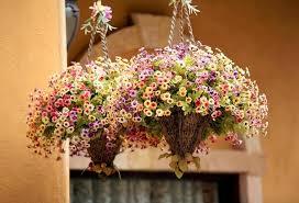 Hanging Flower Pot Hooks Top 4 Coolest Plant Hooks And Hangers For Suspended Pots