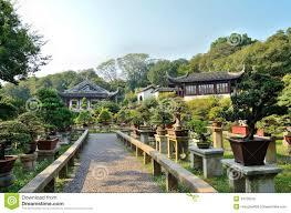 bonsai garden stock image image of gardening garden 34736259