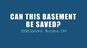 water damaged cleanup and mold removal in basement bucyrus oh
