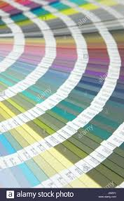 profile graphics colour photo camera rainbow digital print