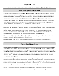 Best Executive Resume Writing Service by Resumes Canada Reviews Construction Coordinator Or Project Manager