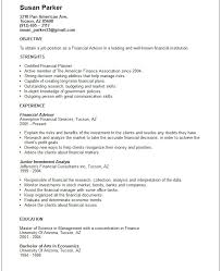 Example Of Government Resume by Example Financial Manager Resume Free Sample Resume Templates