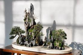 Aquascape Tree The Ancestry Of Aquascaping Is In Bonsai K O I