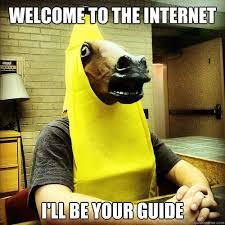 Internet Guide Meme - internet guide meme pesquisa google animais divertidos