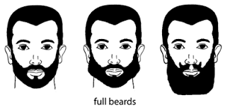 types of hair lines hudson s guide facial hair growth and grooming