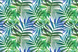 tropical pattern jungle palm leaves patterns creative market