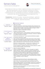 Sample Resume Of Ceo by Co Founder Resume Samples Visualcv Resume Samples Database