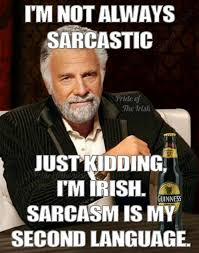 Funny Meme App - tru irish and sarcastic as hell irish proud pinterest