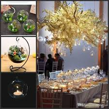 8 10 15cm clear hanging glass vase succulent air plant display